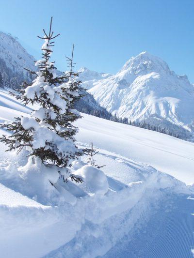 Fresh snow in Lech, Vorarlberg, Austria
