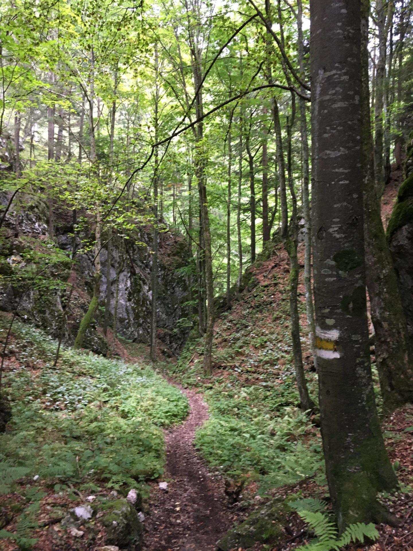 Austrian footpaths