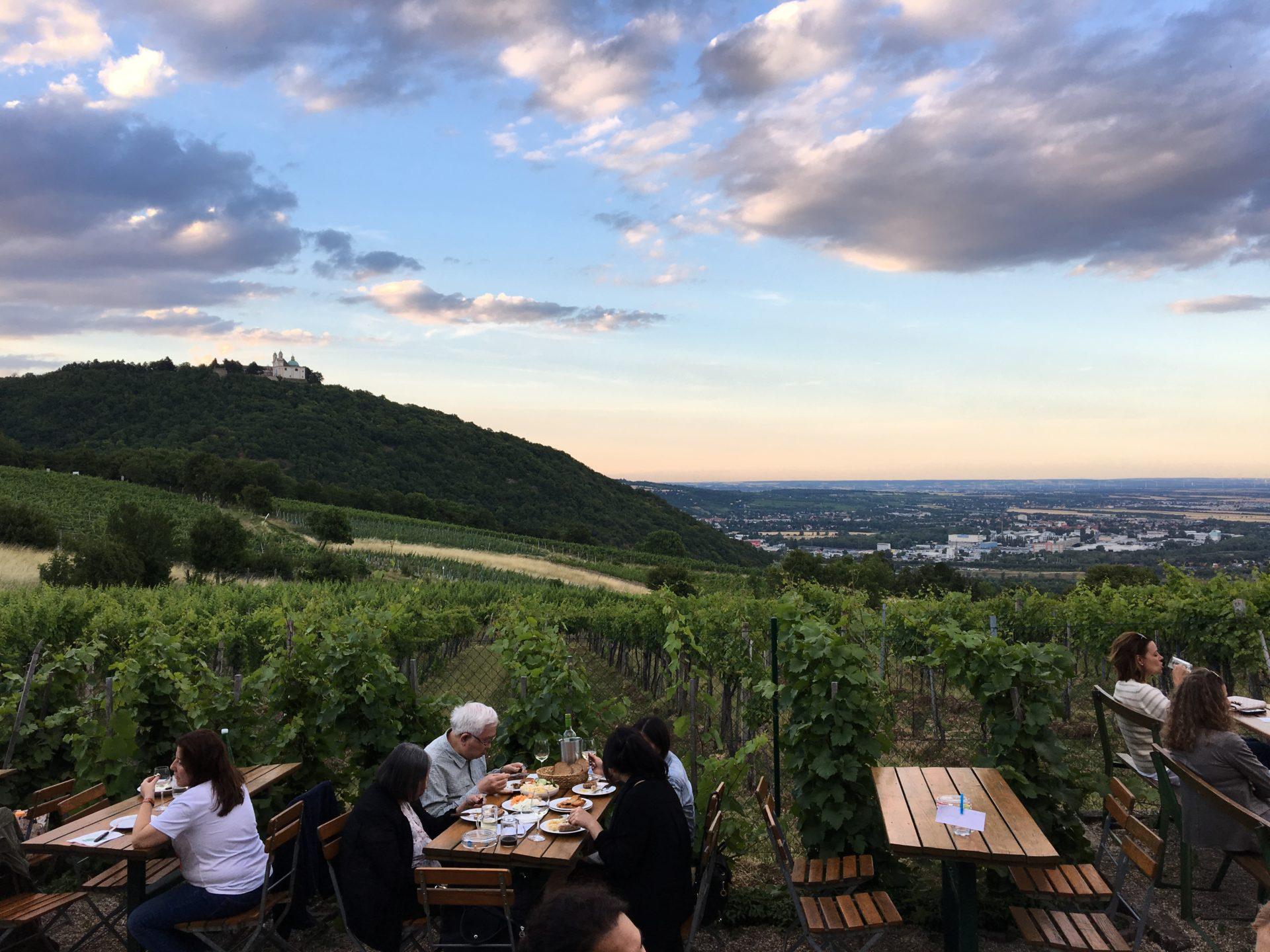 Heuriger overlooking Vienna