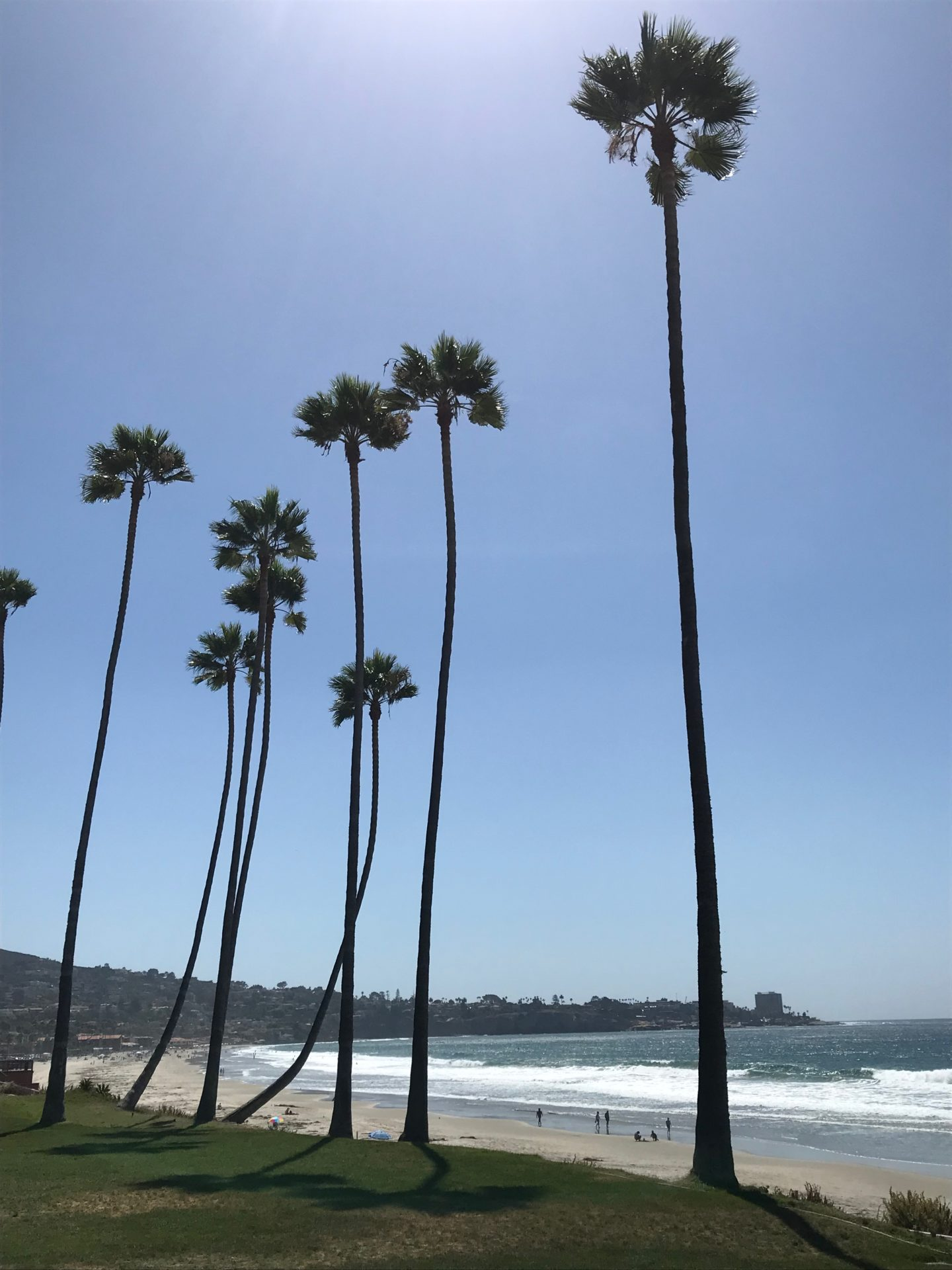 Lo Jolla beach